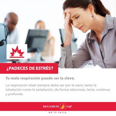 Seguros GyT Agencia Barrientos - foto 2