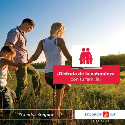 Seguros GyT Agencia Rivera - foto 4