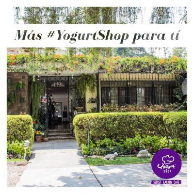 Yogurt Shop - foto 1