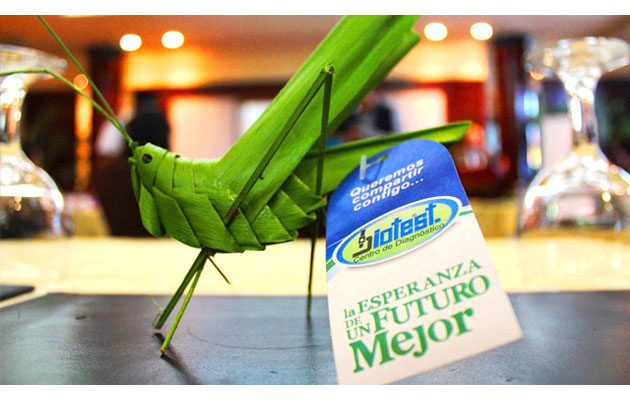 Biotest Calzada San Juan - foto 2