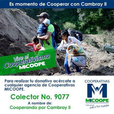 Cooperativa UPA Tikal - foto 1