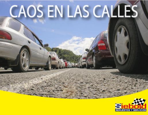 Siebold Carretera a El Salvador - foto 2