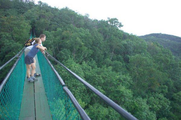 Parque Natural Ixpanpajul - foto 4