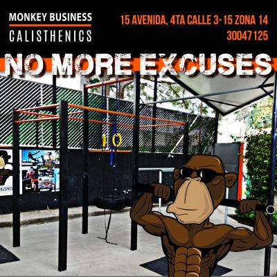 Monkey Business Calisthenics - foto 3