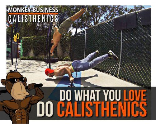 Monkey Business Calisthenics - foto 2