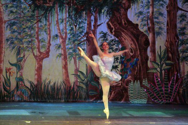 Ballet Armonía - foto 7