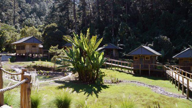 El Santuario Natural El Tular - foto 3
