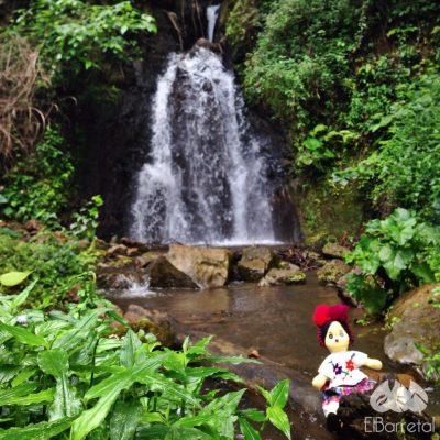 Finca El Barretal - foto 2
