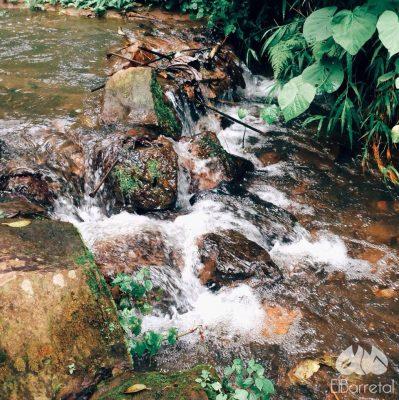 Finca El Barretal - foto 1