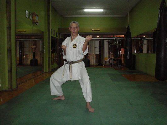 Okinawan Goju Ryu - foto 4