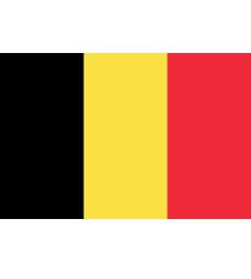Consulado Honorario de Bélgica - foto 2