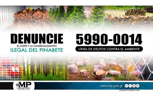Consejo Nacional de Áreas Protegidas (CONAP) - foto 3