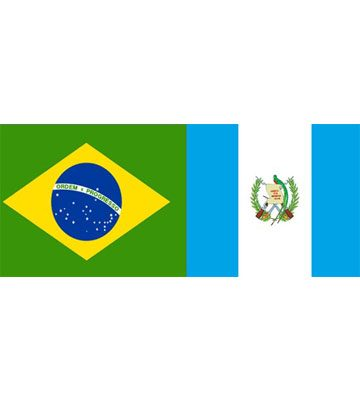 Cuerpo Consular de Brasil - foto 1