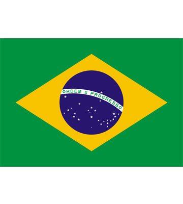 Cuerpo Consular de Brasil - foto 2