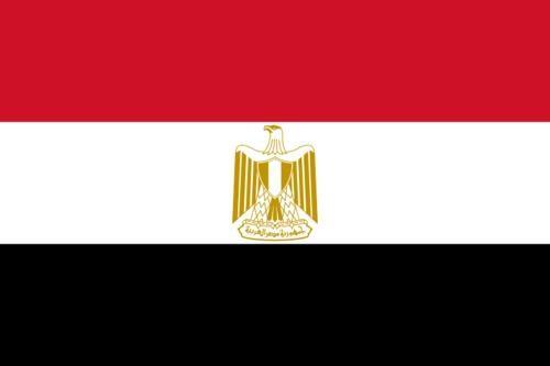 Cuerpo Consular de República Árabe de Egipto - foto 3