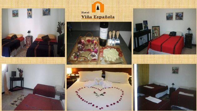 Hotel Viña Española - foto 1
