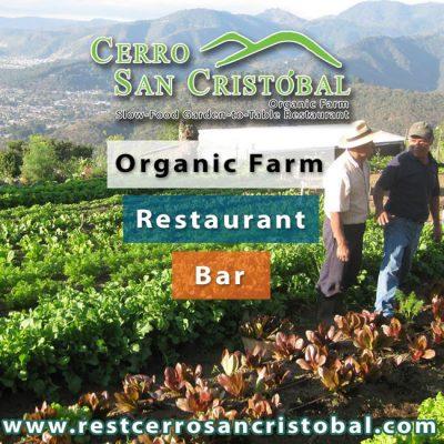 Cerro San Cristóbal - foto 3