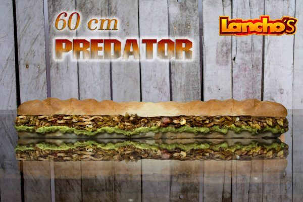Lanchos Steak Sandwiches - foto 4