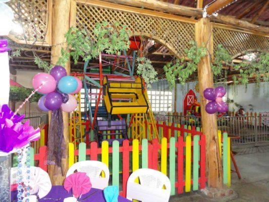 Party Farm Carr. a El Salvador - foto 6