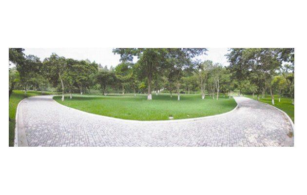 Camposanto Jardines de La Asunción - foto 1