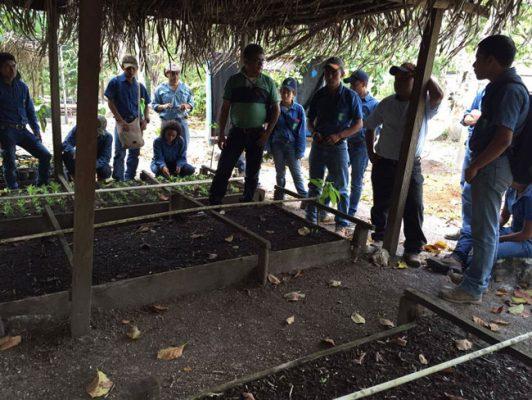 Asociación de Comunidades Forestales de Petén - foto 6