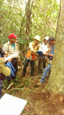 Asociación de Comunidades Forestales de Petén - foto 1