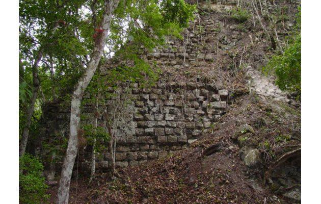 Asociación de Amigos del Patrimonio Cultural y Natural de Guatemala - foto 2