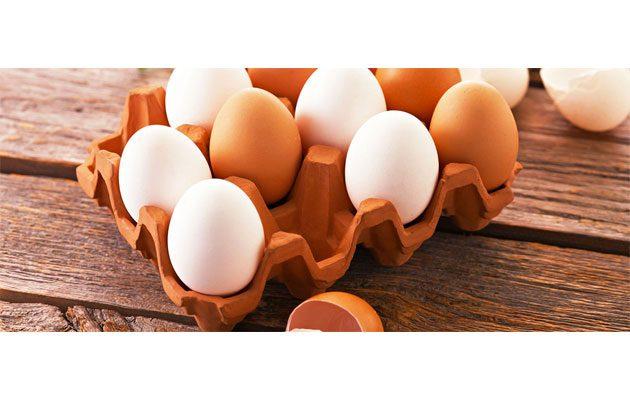 Asociación de Productoras de Huevo - foto 2
