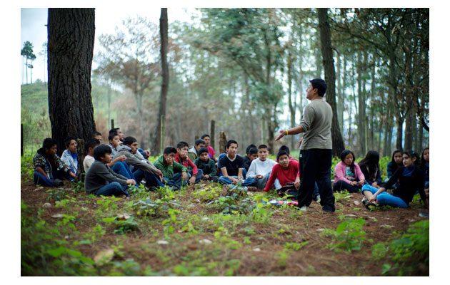 AMG Guatemala - foto 1