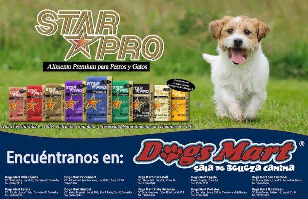 Dogs Mart Cayalá - foto 4