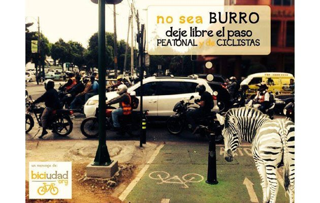 BICiudad de Guatemala - foto 2