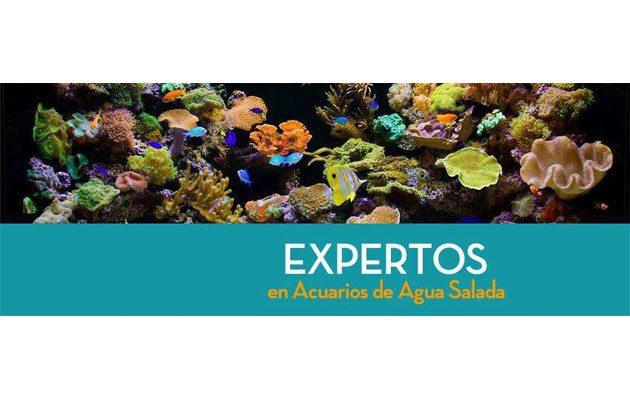 Aqualife - foto 2