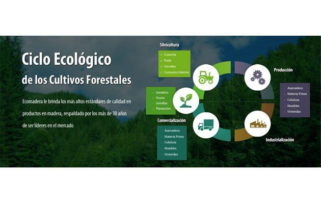 Aserradero Ecomadera - foto 2