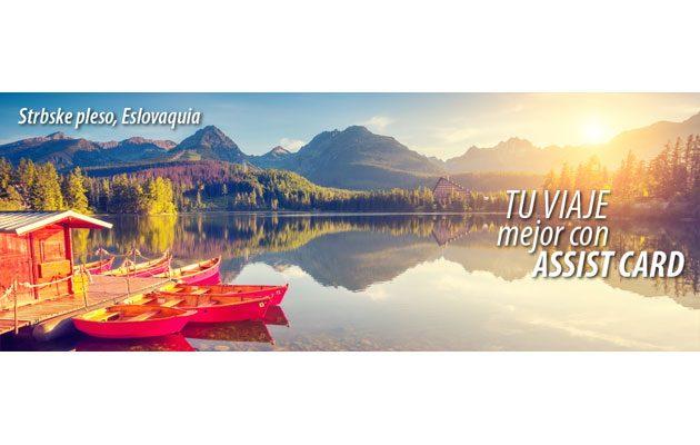 Assist Card - foto 1