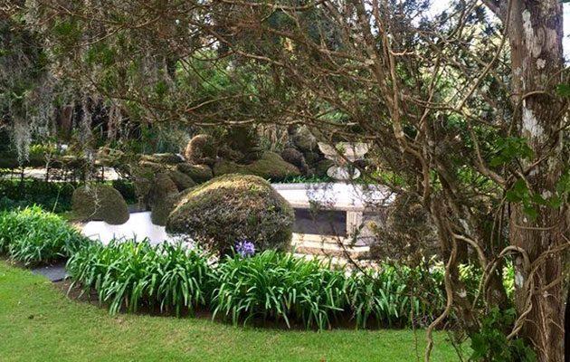 Hacienda San Miguel de Arrazola - foto 7