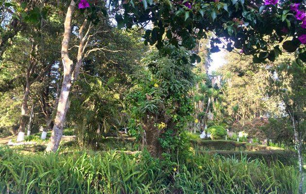 Hacienda San Miguel de Arrazola - foto 6