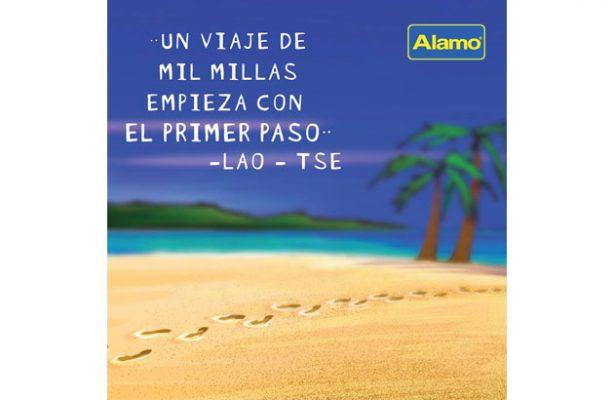 Alamo - foto 6