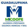 Cooperativa Guadalupana San Lucas