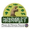 Museo de Historia Natural USAC